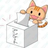 アンケート掲載ッ!!